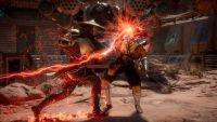 Mortal Kombat 11. Специальное издание (PS4)